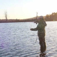 Southern Fly Fishing Adventures